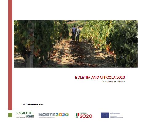 Balanço do ano vitícola 2019/2020 – sessão pública de apresentação e balanço