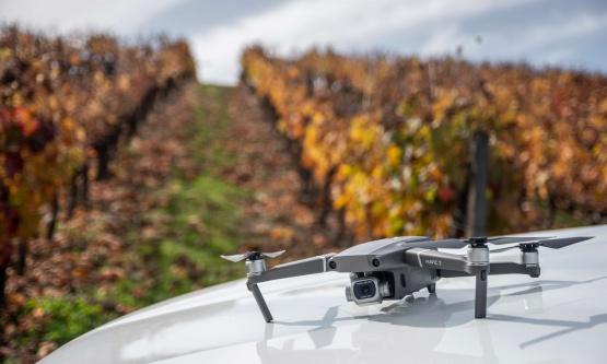 L2 - Precision viticulture