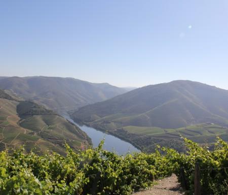 CoaClimateRisk – impactos e medidas das alterações climáticas no Vale do Côa
