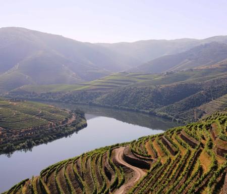 Avaliação do clima na região do Douro
